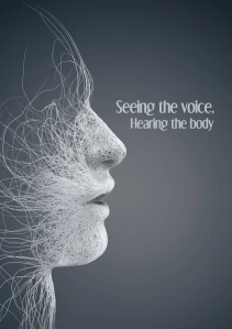 see-the-voice