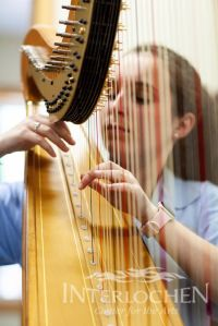 prep harp