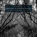 Through the Mangrove Tunnels